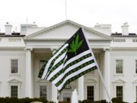 Is Trump Coming For Your Weed?  Gang Of 405 2/25 [Podcast]