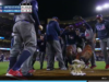 Team USA Dances Triumphantly Around American Eagle On The Mound; Evan McMullin Triggered