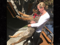 Should We Give Chelsea Handler A Break Because Her Dog Died Today?