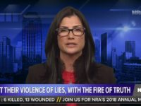 "NRA:  ""We Fight Their Lies, With the Fire of Truth"""